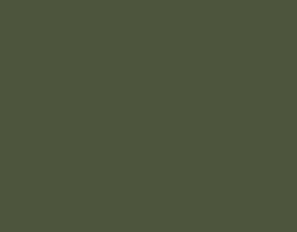 Ral 6003 какой цвет