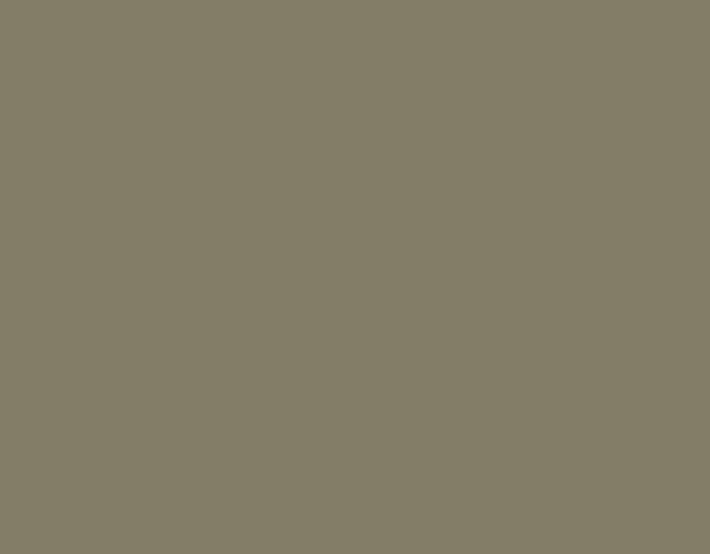 Рал 7002 какой цвет