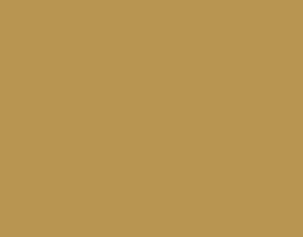 Color Tortora Ral 7044 ral color